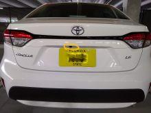 Corolla view of rear